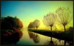 Mistige zonsopkomst boven de Linge #Doornenburg #mist #zon #herfst #natuur #buienradar