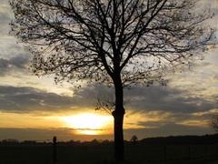 Toenemende bewolking tegen zonsondergang, maar nog net was het zonnetje te zien. #buienradar