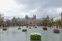 Tulpen uit Amsterdam gaven kleur aan deze sombere dag #buienradar