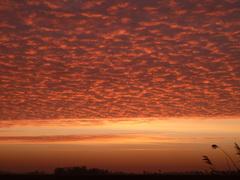 zonsopkomst die geweldig was  #buienradar
